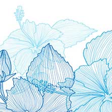 H5素材-爱情-爱心-结婚请柬-婚礼-花瓣